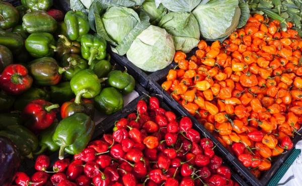 Réouverture du marché alimentaire de Sciez 4